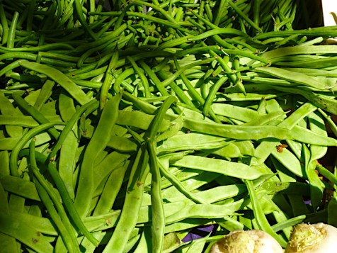 Cocos, or flat beans, with green beans above.