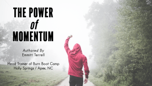 The Power of Momentum