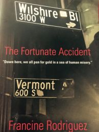 The Fortunate Accident by Francine Rodriguez Cover