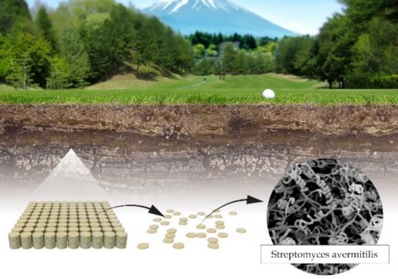 Dibujo201401005 satoshi omura searched novel strains of streptomyces avermitilis - omura - medicine nobel prize 2015