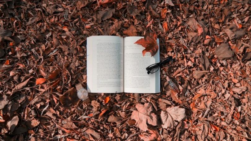 Open book autumn