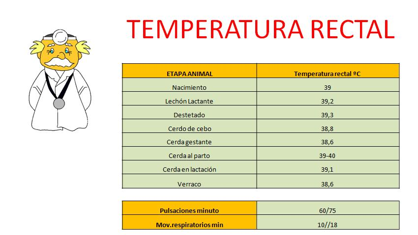 Temperatura corporal en cerdos
