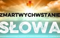 Daję Słowo – XVI niedziela – 20 VII 2014