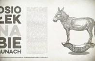 Osiołek na biegunach – Daję Słowo 9 VII 2017 – XIV niedziela A