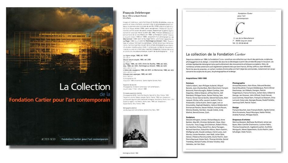 François Delebecque, Collection de la Fondation Cartier