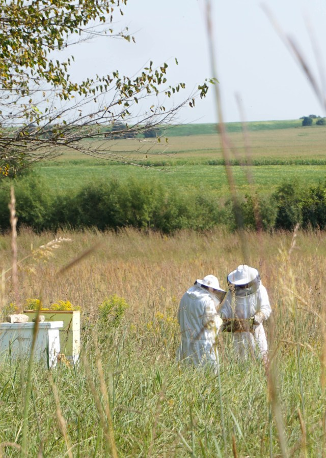 Honey Harvest in Iowa | Francois et Moi