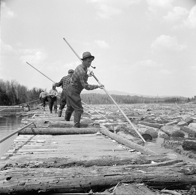 A photo of a pikemen on a spring pulp drive in 1943.  They are standing on wooden rafts surrounded by logs in the river.