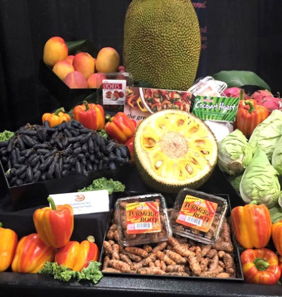 Jackfruit and Tumeric