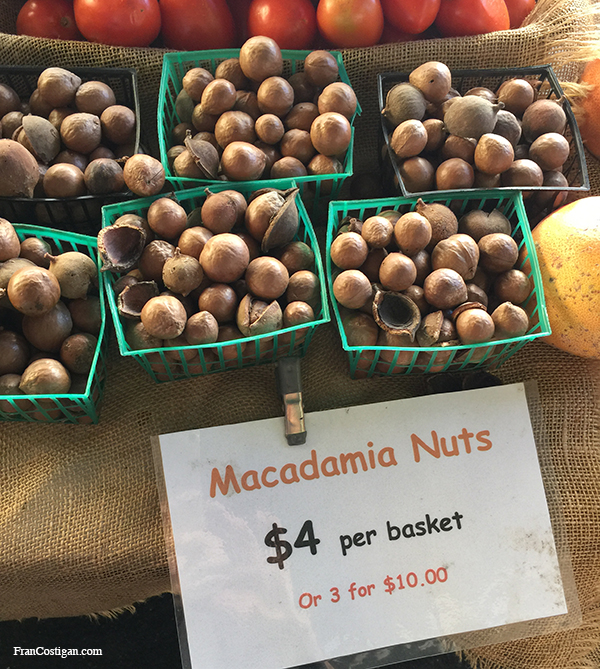 fresh-macadamia-nuts