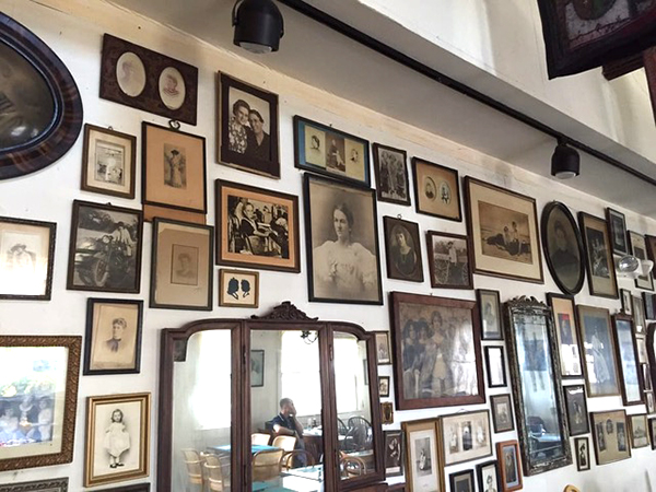 Bloodroot wall of photos