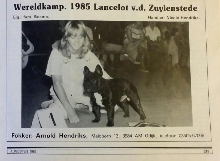 Arnold Hendriks: Mojih pola stoljeća s francuskim buldozima