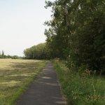 unstrut-radweg_weg_nach_werningshausen