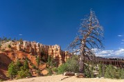 bryce_national_park_img_3971