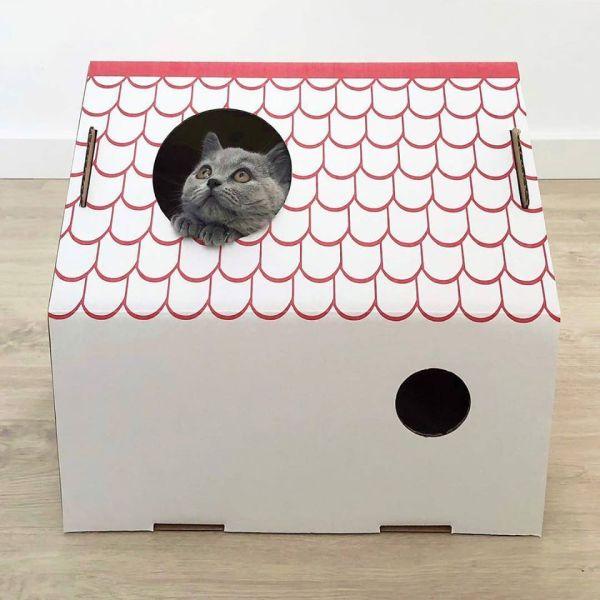 La casita de Frankie