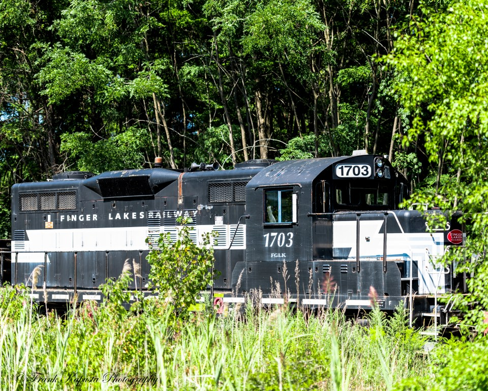 I found No. 1703 Finger Lakes Railway engine along with its sister engine No. 1701 on a storage siding along Route 20 In Geneva, NY.