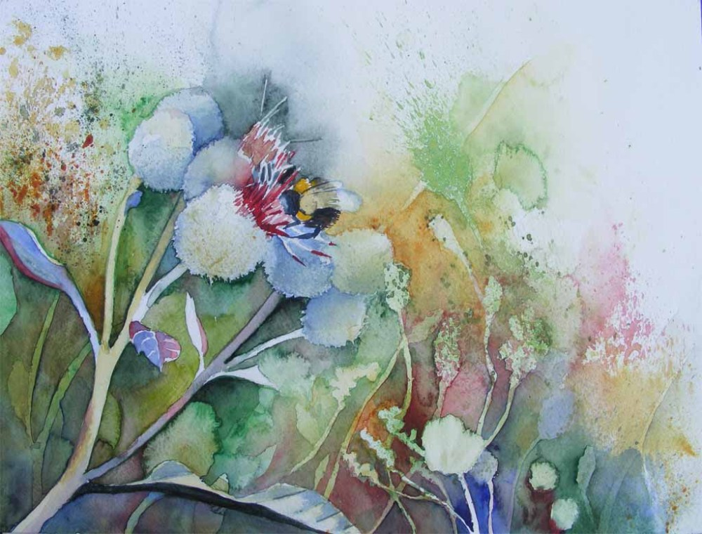 Distel Aquarelle (6/6)
