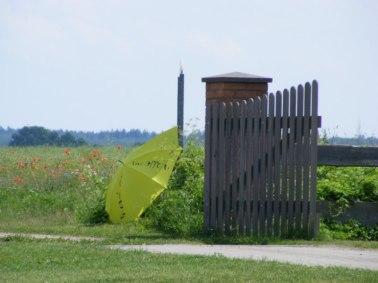 Kunst offen in Mecklenburg Vorpommen (1)