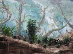 Wandmalerei im Darwineum (c) Frank Koebsch 2