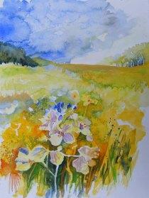 Sommer über den Feldern (c) Aquarell von Hanka u Frank Koebsch