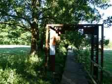 Moorerlebnispfad am Schaalsee (c) FRank Koebsch (2)