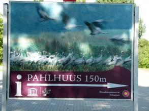 Pahlhuus (c) FRank Koebsch (1)