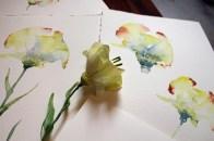 Die Kunstblume Lore und ihre Aquarelle von Hanka Koebsch (3)