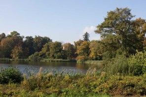 Sonniger Herbst im Park von Putbus (c) Frank Koebsch (3)