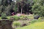 Teich und Arboretum im Botanischen Garten Rostock (c) Dethardt Götze
