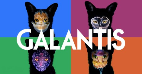 stop what you re doing and listen to galantis frankles