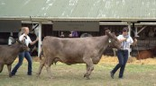 Roxanne and Catherine Rawnsley produces blue ribbon results.