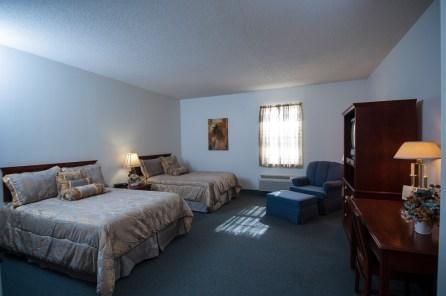 guest room 1 - copy