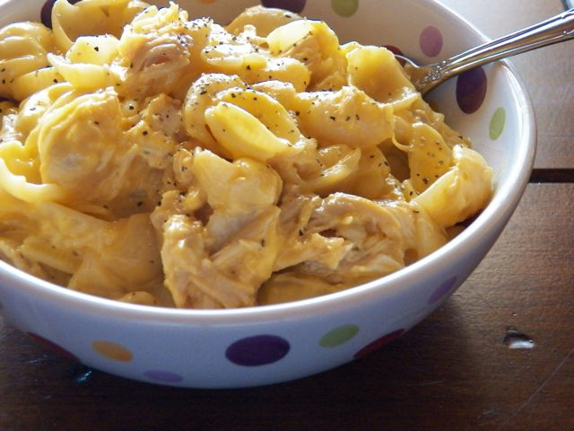 Shredded Chicken tossed into a serving of creamy Mac 'n Cheese