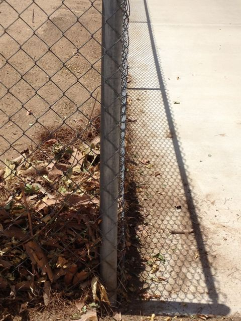 Cleaner fenceline at driveway.