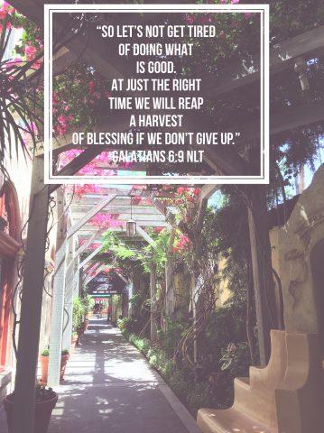 Galatians 6:9 NLT