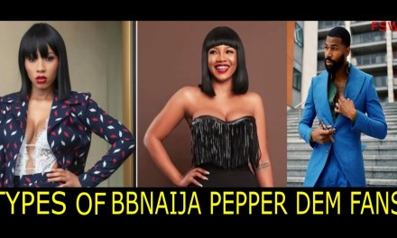 TYPES OF BBNAIJA FANS & VIEWERS – WHICH ARE YOU?