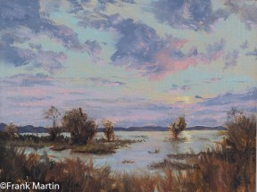Chesapeake Marsh - study
