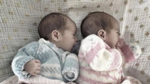 twins-v