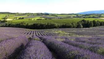 Tips voor de vakantie in de Drôme
