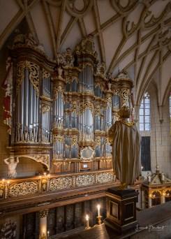Schloss Altenburg Trostorgel