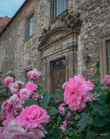 Barockportal im Burghof