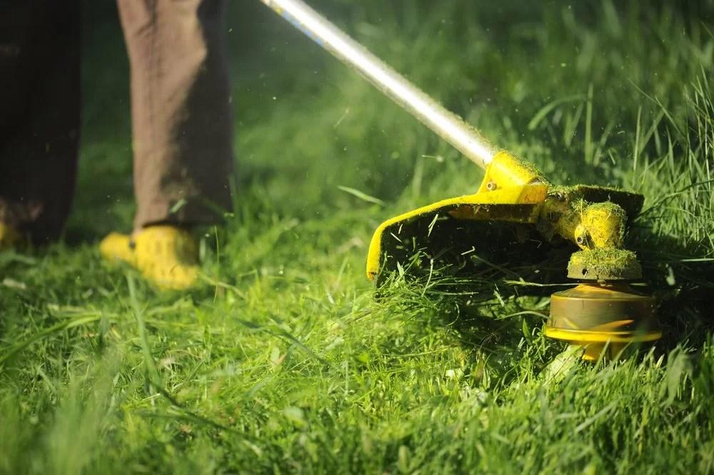 Lawn Maintenance in Miami