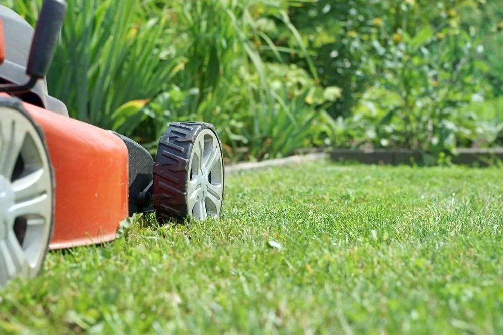 Miami Lawn Company