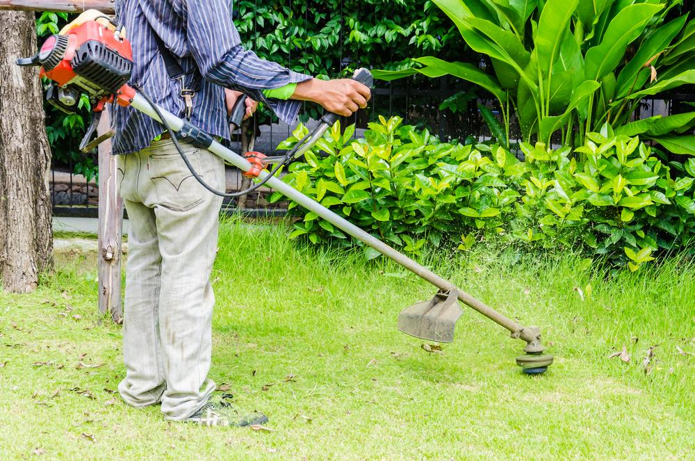 Lawn Care Services , Lawn Treatment , Lawn Services