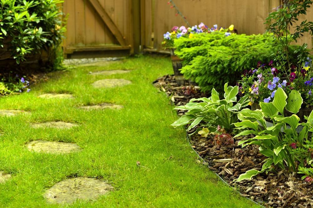 Backyard Maintenance Services