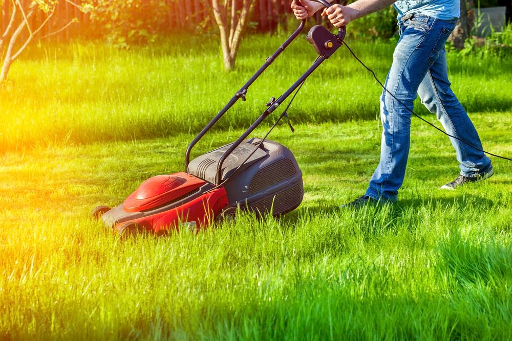 Best Lawn Mowing Services