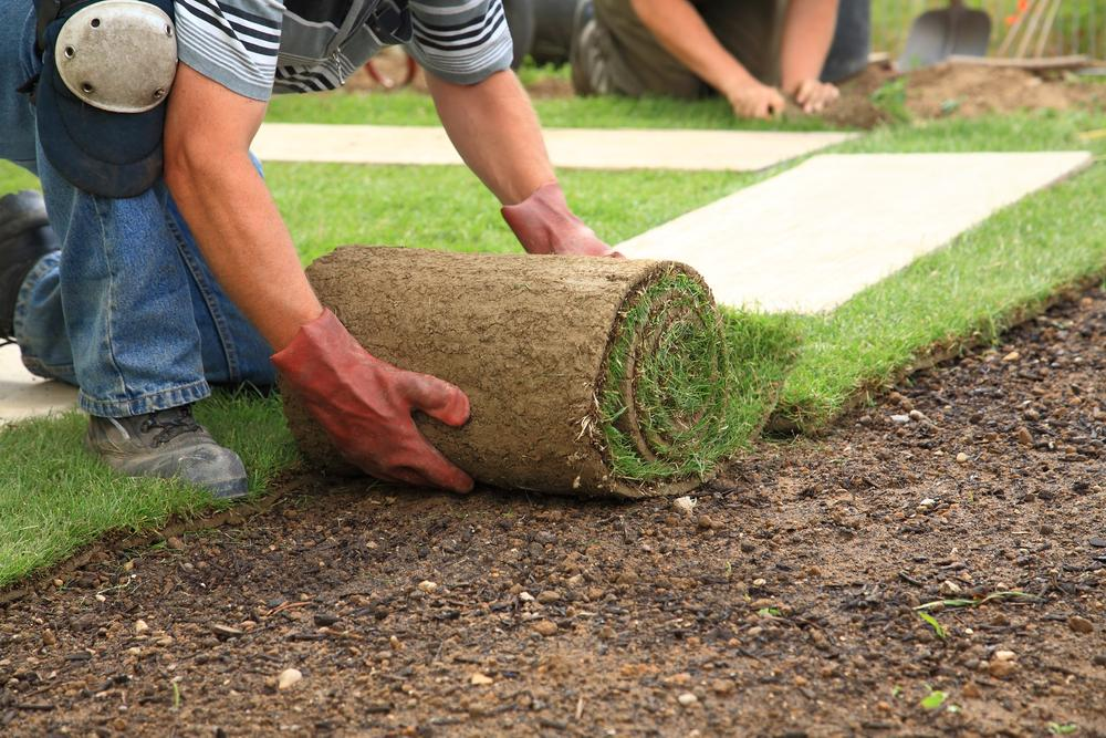 Commercial Landscape Maintenance Company