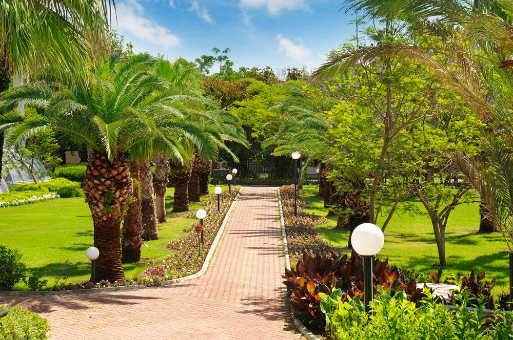 Landscaping Services Near Kendall