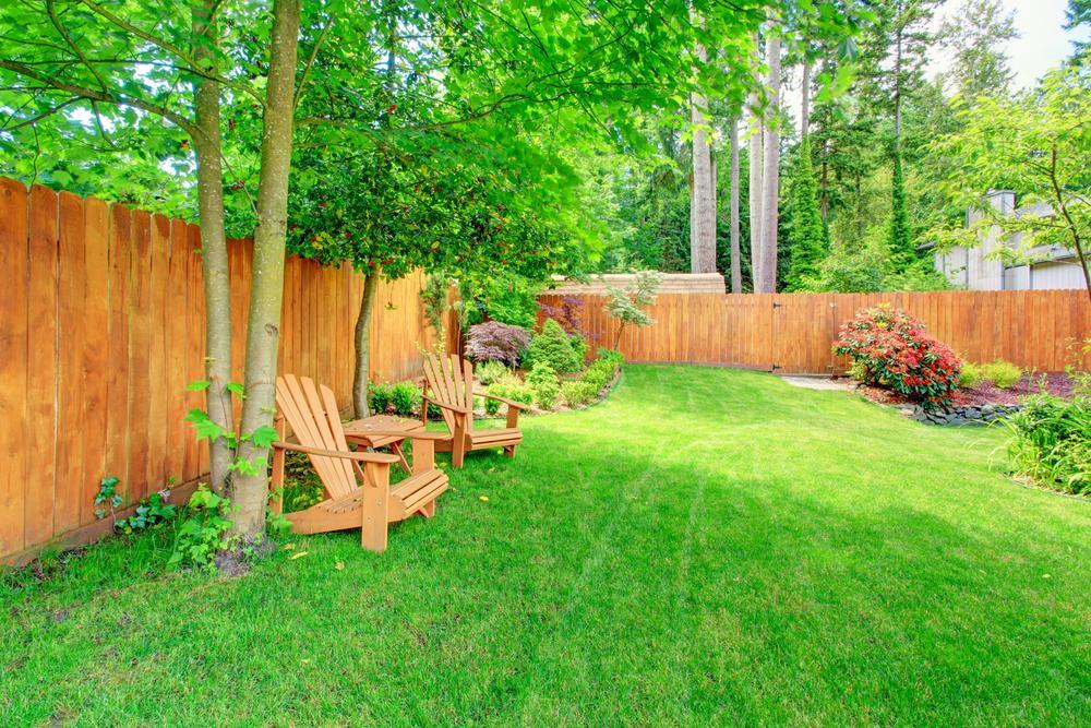 Custom Landscape Maintenance