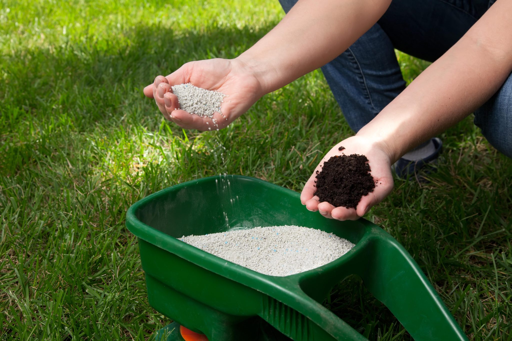 Lawn Grass Fertilizer