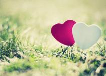 Cute Love Status for Girlfriend